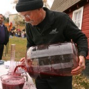 Cambria Crush: Annual Grape Stomp