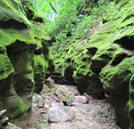 Devil's Gulch - Most Instagram-Worthy Spots in Mankato