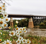 Red Jacket Trail Trestle Bridge - Most Instagram-Worthy Spots in Mankato